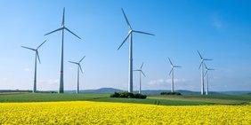 Windräder und Rapsfeld